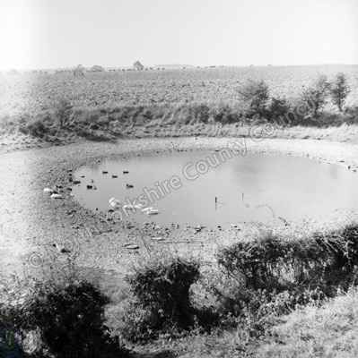 Dew Pond, Sledmere